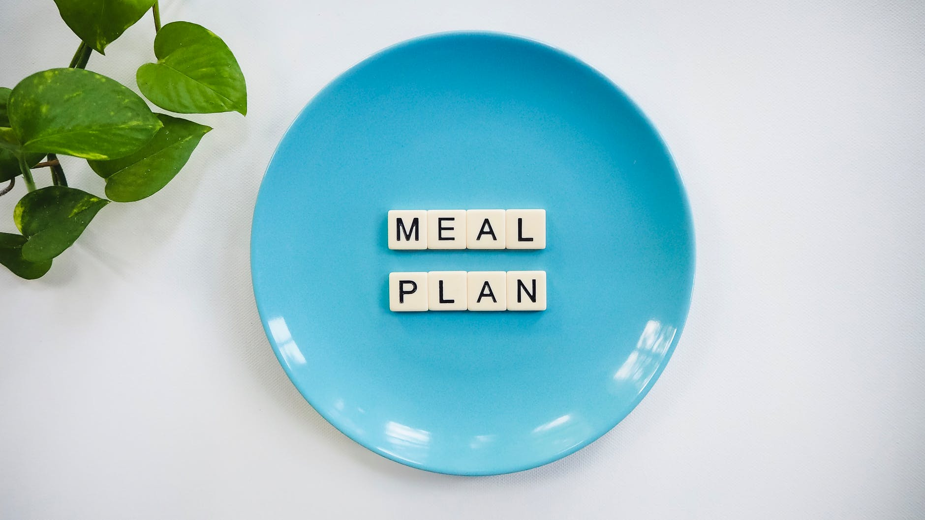 blue ceramic plate with meal plan blocks